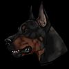 DarthmoreKennels's avatar