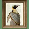 DarthSithari's avatar