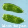Darwin10011's avatar