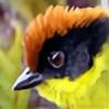 Davidaker's avatar