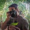 DavidVeevers's avatar