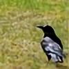Dawny05Photography's avatar
