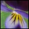 Daxalicious's avatar