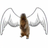 dayonos's avatar