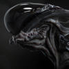 DbVectra's avatar