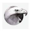 Deaglety's avatar