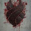 DEATHcyraxWAR's avatar