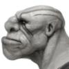 decoyocelot's avatar
