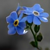 Deep-Blue-Secret's avatar