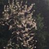 Deepikasaini2005's avatar