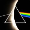 Deeployd's avatar