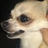 deidara-chan88's avatar