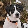 DelmaArt7's avatar