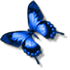 DemonKourai's avatar
