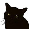 Denkiz's avatar