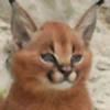 DenseLynx's avatar