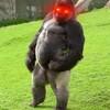 DerKaiser117's avatar