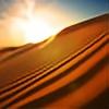 desert2's avatar
