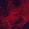 design-yse's avatar