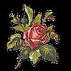 design112's avatar