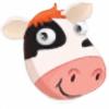 designercow's avatar