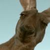 DesmyBlack's avatar