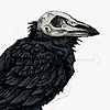 destiny-the-crow's avatar