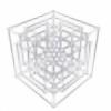 deviandictor's avatar
