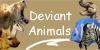 Deviant-Animals
