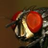 DG-Photo's avatar