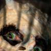 DGrall's avatar
