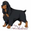 Dhaktreal's avatar