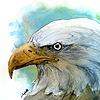 DharmikR's avatar
