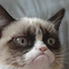 Di87's avatar