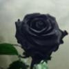 DidiEspi's avatar