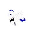 diegomolina's avatar