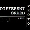 Different-Breed's avatar