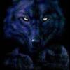 DIGITALMYSTICWOLF's avatar