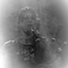 digitalpigeon's avatar
