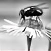dimfly's avatar