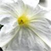 Din4a's avatar