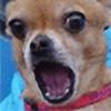Dingo666's avatar