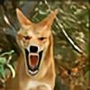 DingoTWilds's avatar