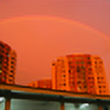 dingqi321's avatar
