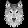 direwolveScosPHOTO's avatar