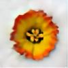 discret's avatar