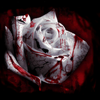 DislocateMeNOW's avatar