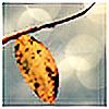 Disturbiah's avatar