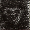 Divedog's avatar