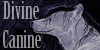 DivineCanine